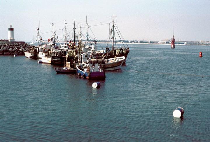 800px-Grève_des_marins-pêcheurs_rochelais_en_1980_1