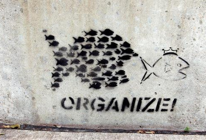 organize-hr-blogger